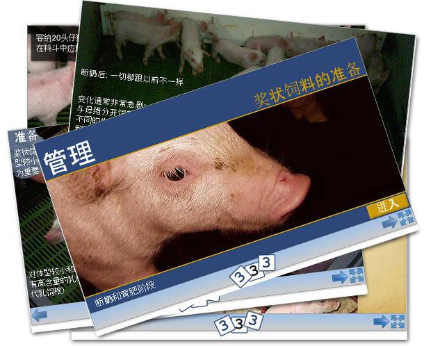 新版块: 猪场管理