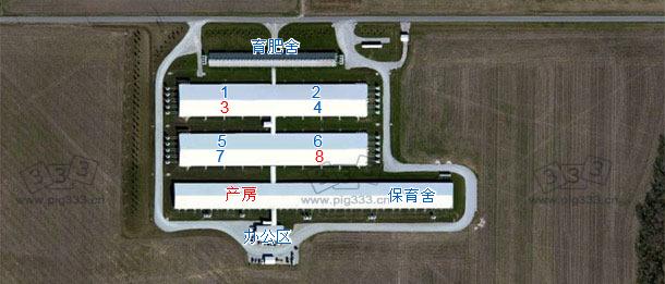 母猪存栏为6000头的种猪场(该猪场隶属于一存栏15,000 头的母猪专业场),设有专门的自繁自养系统