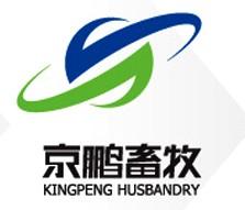 Kingpeng  1