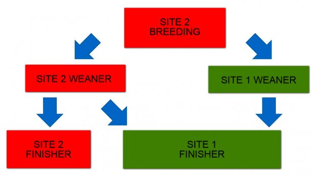 Figure 1:  Schematic illustration of two site production system pig flow.