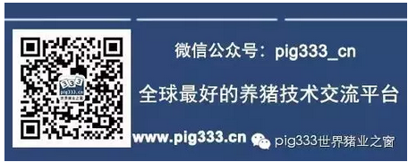 PIg333wechat 1