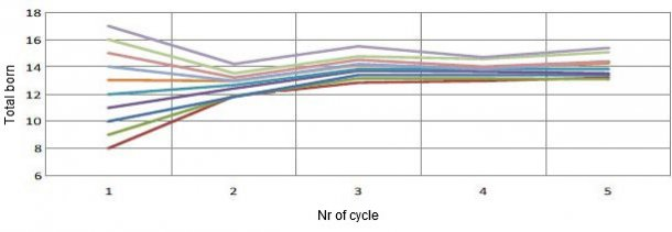 Graph 1. Evolution of prolificacy based on first farrowing prolificacy. For each piglet total born (TB) at the first farrowing, there will be 0.4 more TB per cycle.