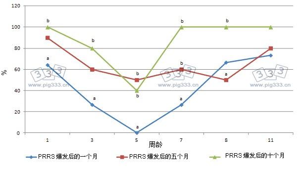 PCV2血清转化。在1,3,5,7,9周龄的猪中,疫病爆发后的1,5,10 个月,血清阳性的比列(采用免疫过氧化物酶单层试验法,稀释比例为1:500),a和b表示在血清转化比例在统计学上的显著差异(血清采自1,3,5,7,9周龄的猪)(P<0.05)。