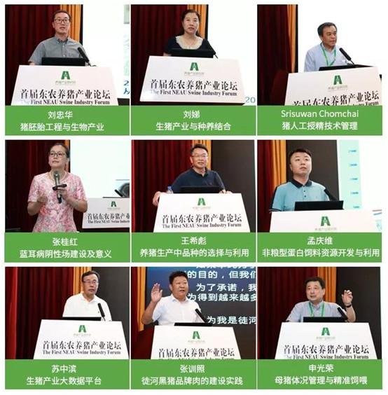 首届东农养猪产业论坛 6