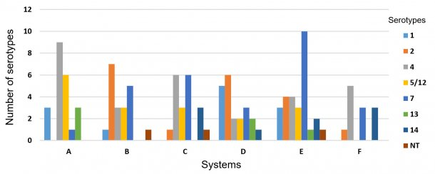 Figure 3: Distribution of Haemophilus parasuis in six different swine systems.