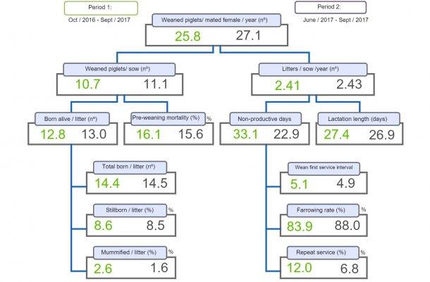 图1:生产力图谱,比较两个时期每头母猪年产断奶仔猪数。
