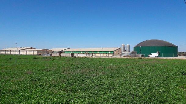 塞格里亚地区(西班牙莱里达)的猪场,以热能和电能的形式生产沼气供内部使用。