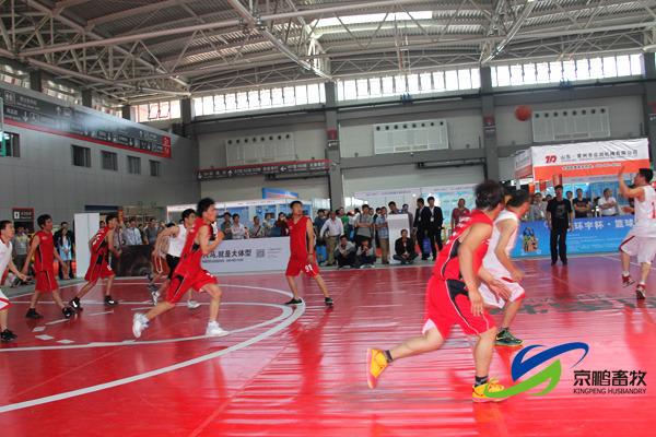 六马龙腾队和北京博士队奔跑在赛场