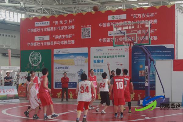 北京博士队和赛博迪骑士队赛中的激烈比拼
