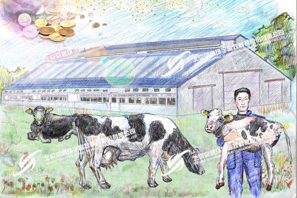 """京鹏环宇畜牧""""和谐牧场""""倡导  人、牛、环境、效益相互和谐"""
